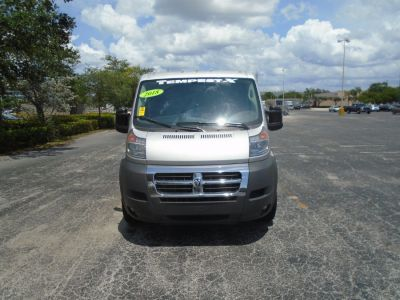 Gray Ram ProMaster Cargo image number 1